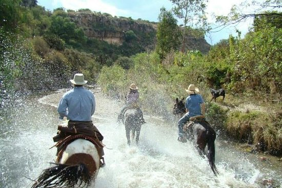 Half-Day Horseback Riding Adventure