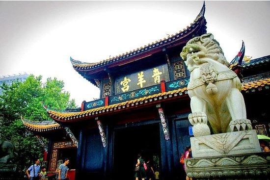 4-timers privat tur i Chengdu med...