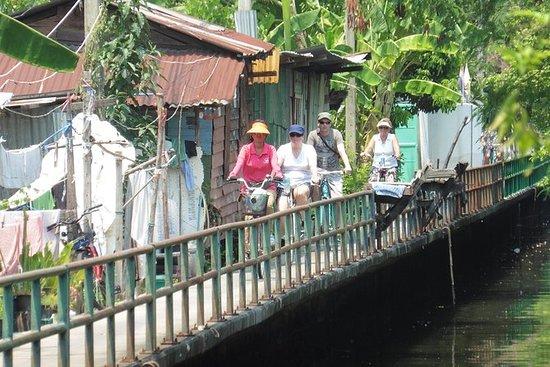 半日曼谷自行车之旅包括午餐