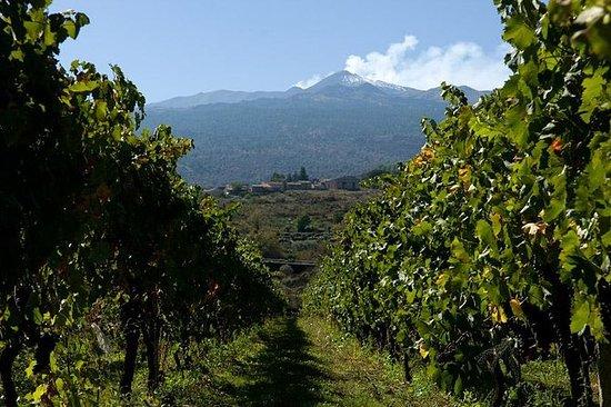 Etna y recorrido de vinos desde...