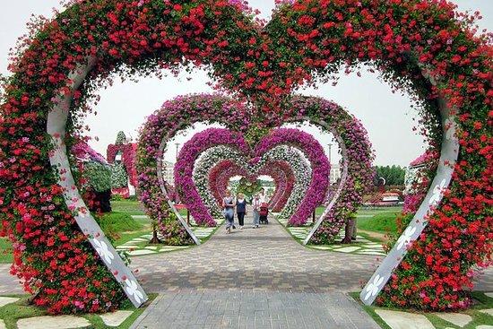 Dubai Fairyland Sights: Miracle...