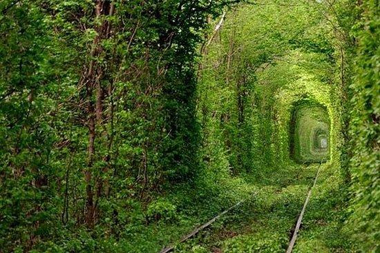 Excursión de un día al Túnel del Amor...