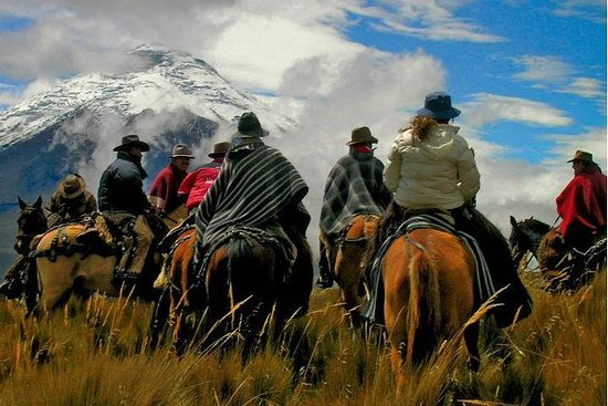 Volle dag paardrijden in Mendoza