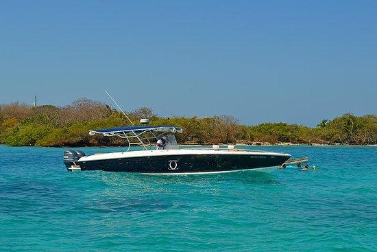 Privatfartbåt Opplev Rosario Islands...