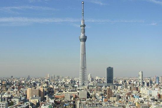 1日の東京バス ツアー