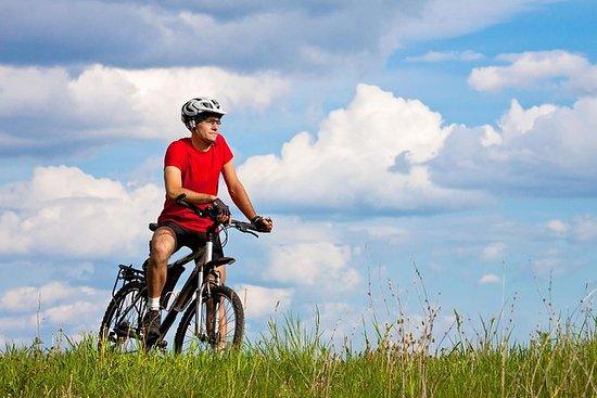 山地自行车诊所