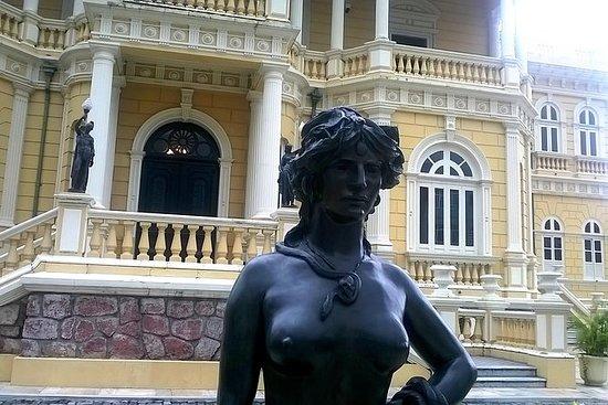 Tour por la ciudad de Manaus y...