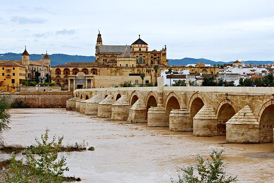 Private Guided City Tour of Cordoba