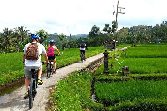 Half-Day Electric Bike Tour of Ubud