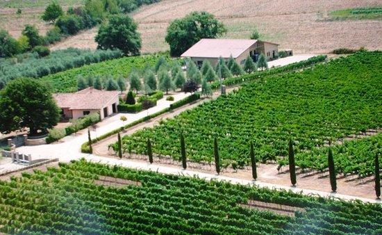 托斯卡納的Villa Corano Winery Tour