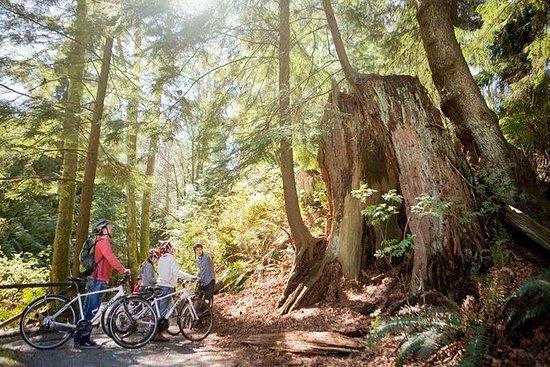 Uavhengig Bike Tour of Vancouver