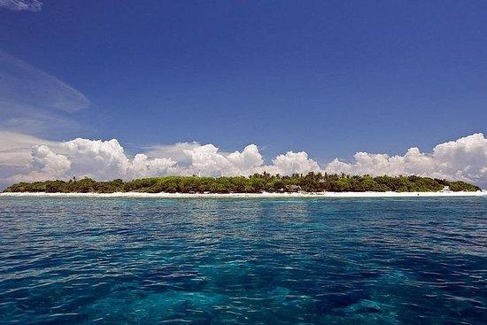 Isla privada de Balicasag con...