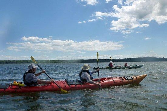 Excursión en kayak en el mar de la...