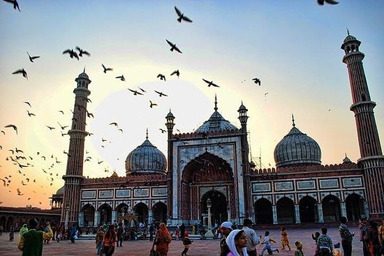 Old Delhi Cycle Tour