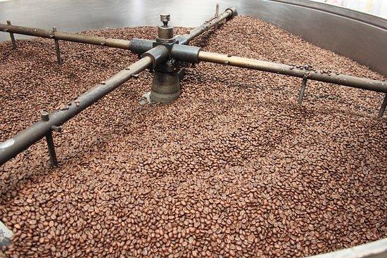 Kaffeetour in der Hacienda...