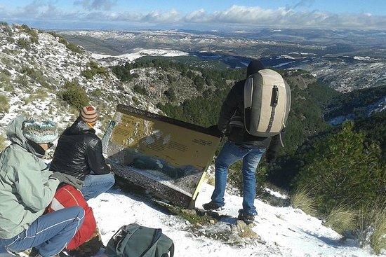 Excursión de un día a la montaña de...