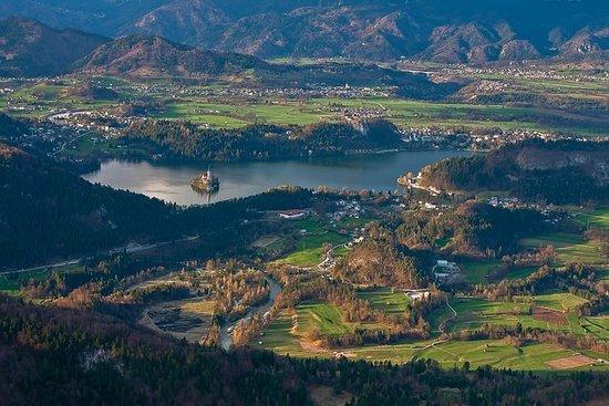 Excursión de medio día al lago Bled...