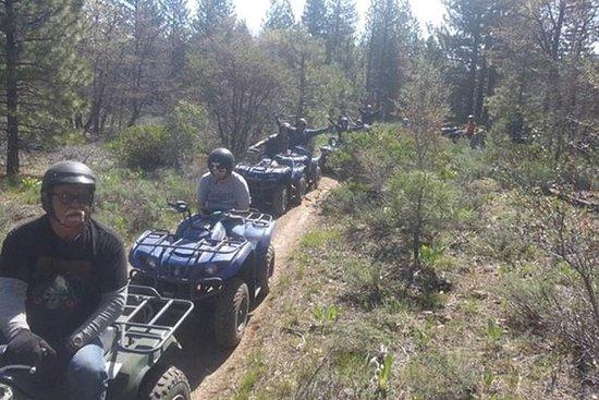 Tour estivi ATV da Reno