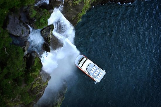 Halbtägige Milford Sound...