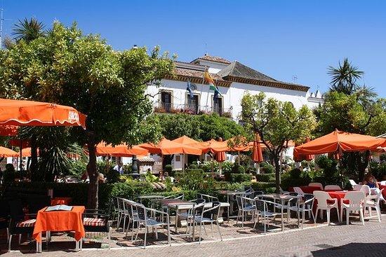 Malaga Excursion: Malaga- Marbella et...