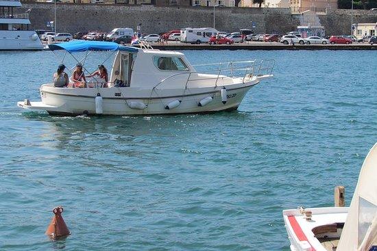 Excursion en bateau privé dans...