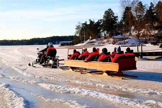 Private Snowmobile Sleigh Tour in...
