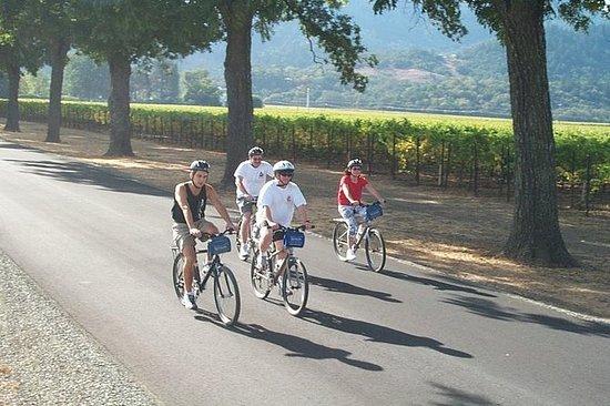 Full-Day Healdsburg Wine Country Bike...