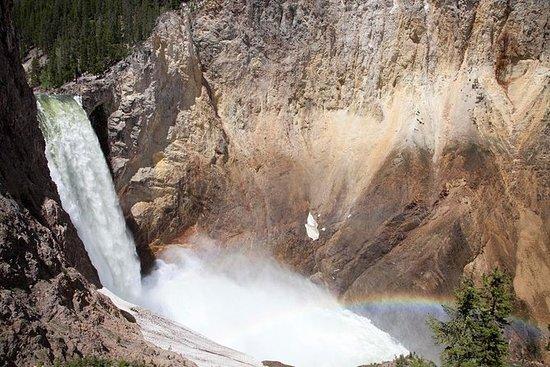 Private ganztägige Yellowstone...
