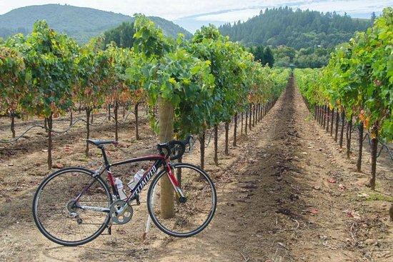 Dry Creek Valley Cykel- och vintur ...