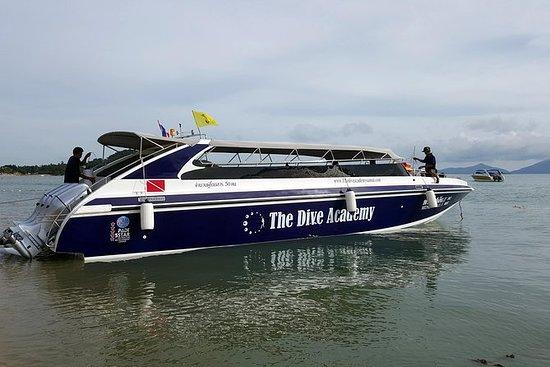 从苏梅岛乘快艇私人包车之旅