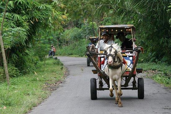 私人旅游:全日Sasak之旅和骑马车