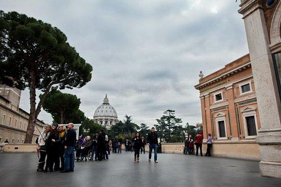 Excursión privada·al Vaticano...