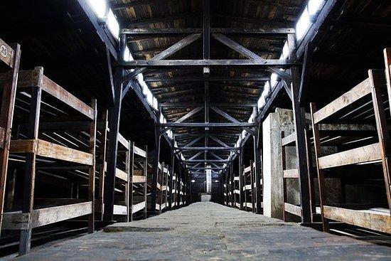 Tour di un giorno ad Auschwitz-Birkenau