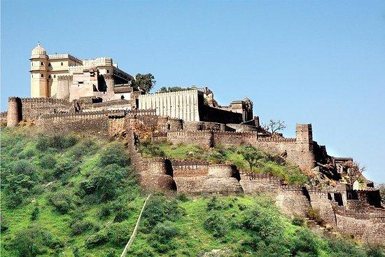Excursão de um dia ao Forte Kumbhalgarh...