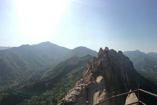 Dagstur til Mount Seorak og Naksansa...