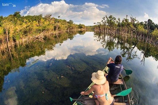 Ecoturismo floresta nacional Flona...