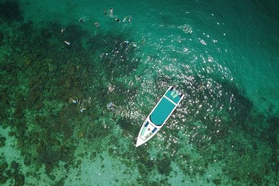 Private Full-Day Speedboat Tour of...