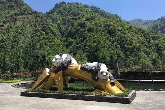 一日游到卧龙熊猫基地和都江堰灌溉大坝