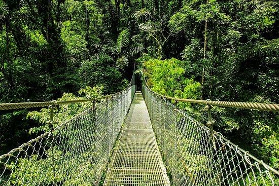 从阿雷纳尔悬挂的桥梁