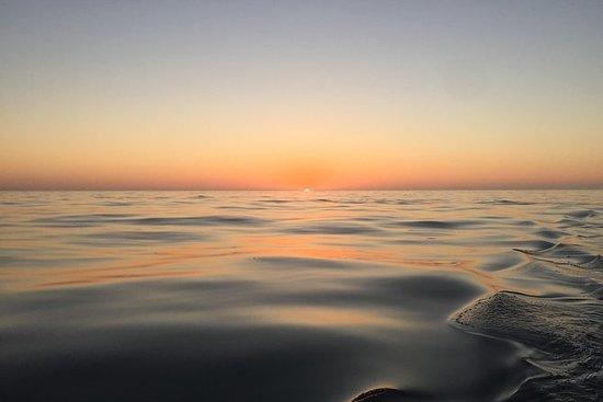 Croisière privée sur l'océan avec...