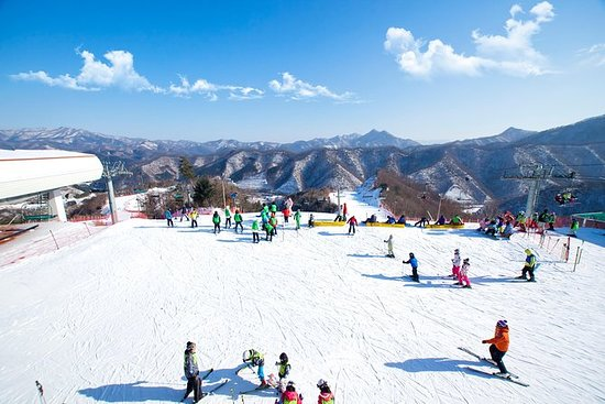 Elysian Ski with Nami Island One Day...