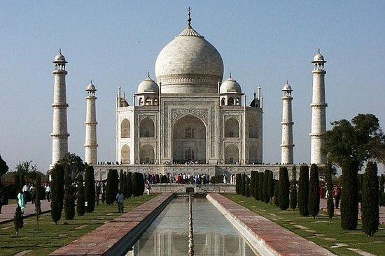 Excursion privée au Taj Mahal et à...