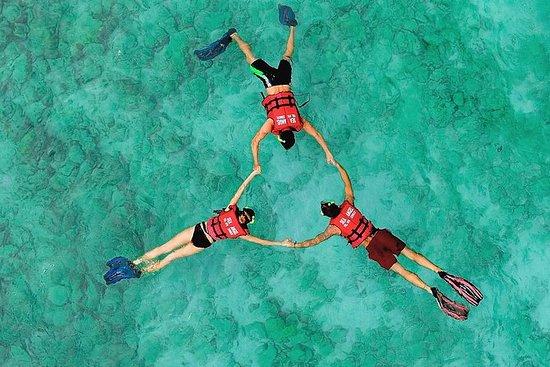 Full Day Phi Phi Island Luxury Tour