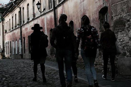Visite guidée de Vilnius à la...