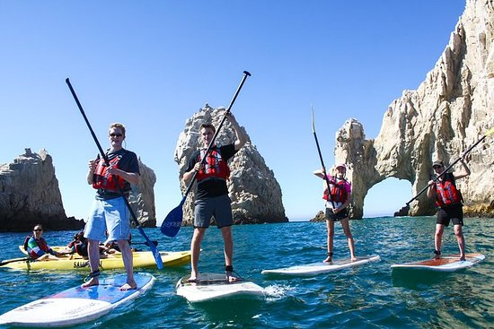 GUIDED STAND UP PADDLE AND SNORKEL AT...