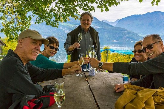 Lucerne Wine Tasting and boat Tour...