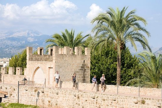 在私人徒步旅行中探索Alcudia老城区