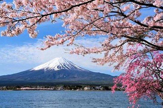 諏訪湖と、富士山または河口湖を経由する高山から東京への片道日帰りツアー