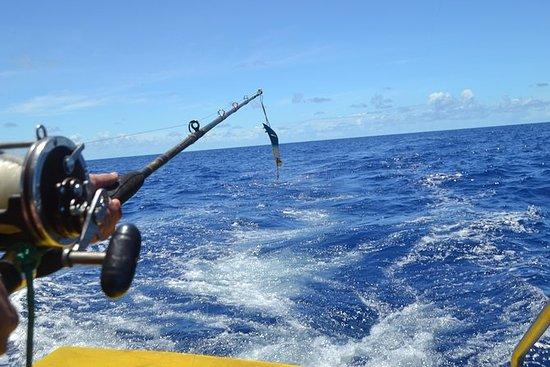 Excursão de pesca em alto mar em...