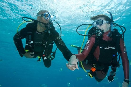 2 Dive Package for PADI Qualified...